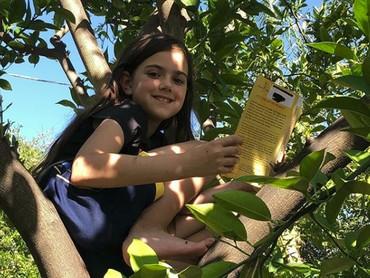 Salah satu hal favorit Abby adalah memanjat pohon jeruk dan membaca buku. (Foto: Instagram @abbyryderfortson)