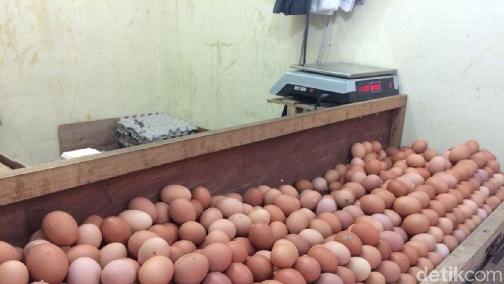 Timses Prabowo Beberkan Jurus Pangkas Harga Telur