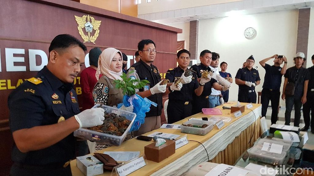 2 Penyelundup Satwa Langka Ditangkap di Batam