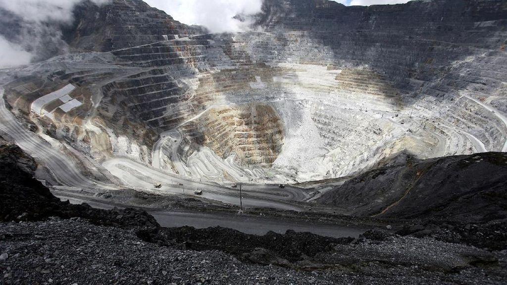 Caplok 51% Saham Freeport, Inalum Talangi Pemda Papua Rp 13,5 T