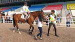 Gaya Sandi dan Mentan Berkuda Tinjau Venue Equestrian