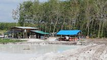 KLHK Tangkap Pelaku Tambang Timah Ilegal di Hutan Bangka Belitung
