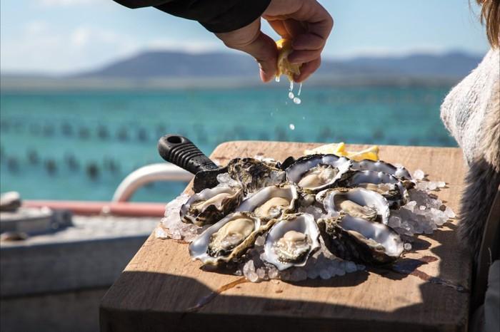 Foto: Oyster Farm Tours