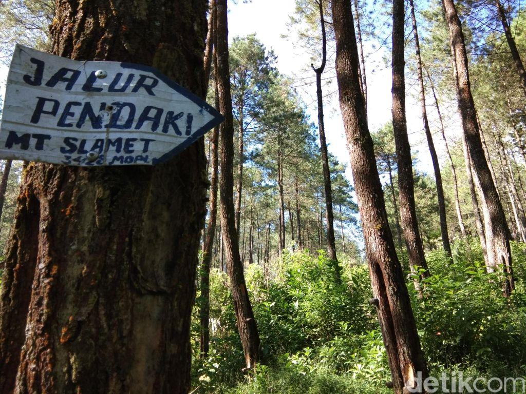 Jalur pendakian Gunung Slamet via Guci