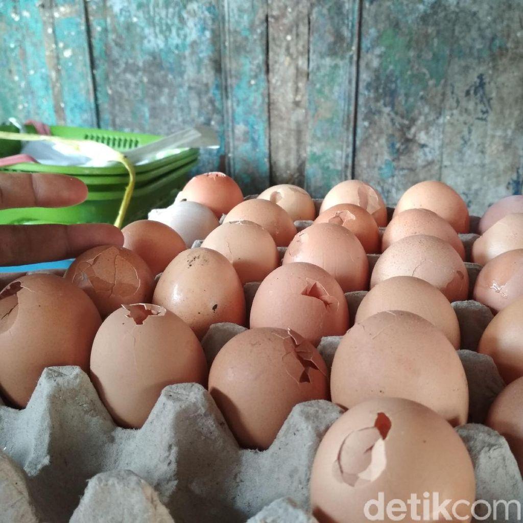 Video: Harga Telur Selangit, Pembeli Pilih Telur Rusak