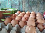 Harga Telur Selangit, Banyak Konsumen di Blitar Beralih ke Telur Ini