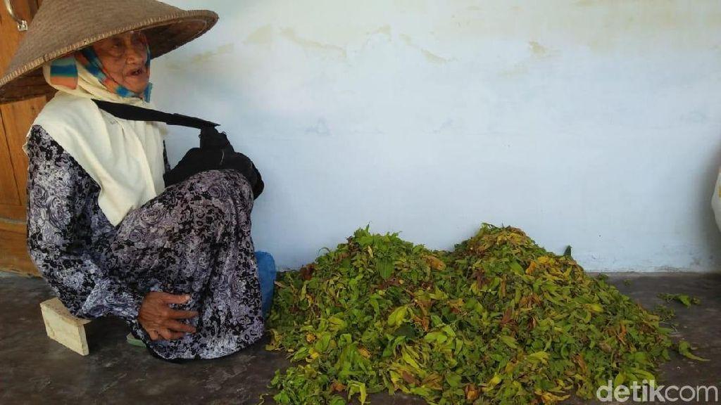 Ini Kisah Keseharian Nenek Penjual Bunga Kenanga yang Naik Haji