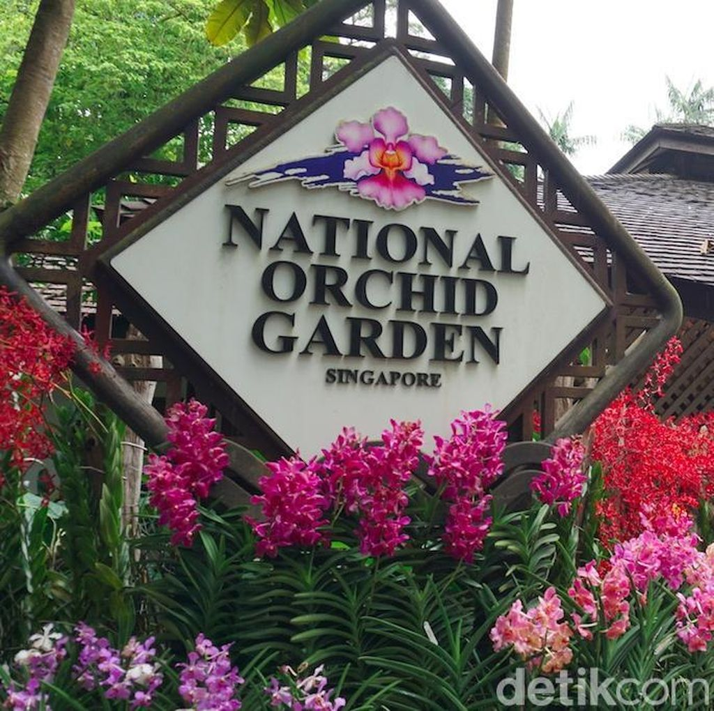 Melihat Aneka Bunga Anggrek dari Berbagai Negara di Singapura
