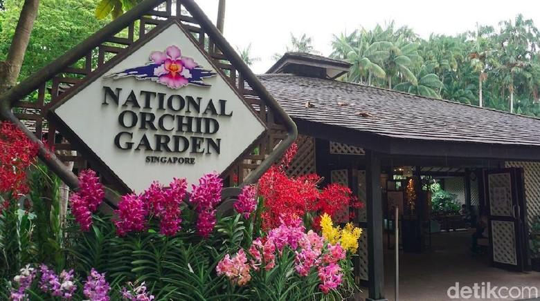 Foto: National Orchid Garden di Singapura (Shinta/detikTravel)