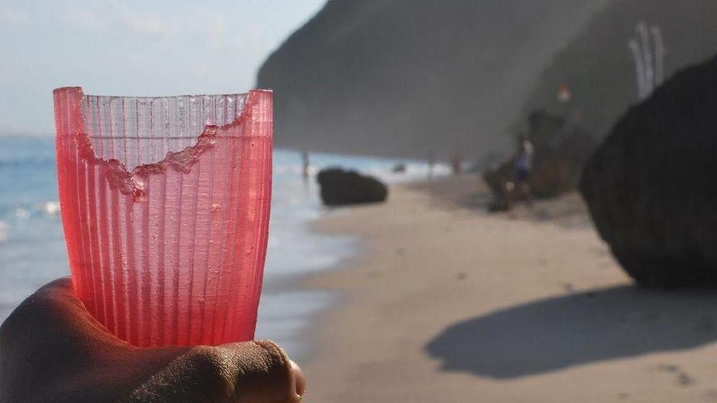 Inovasi Sehat, Ubah Rumput Laut Jadi Gelas Bisa Dimakan