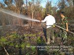 Hotspot di Sumatera-Kalimantan Meningkat, KLHK Intensif Patroli
