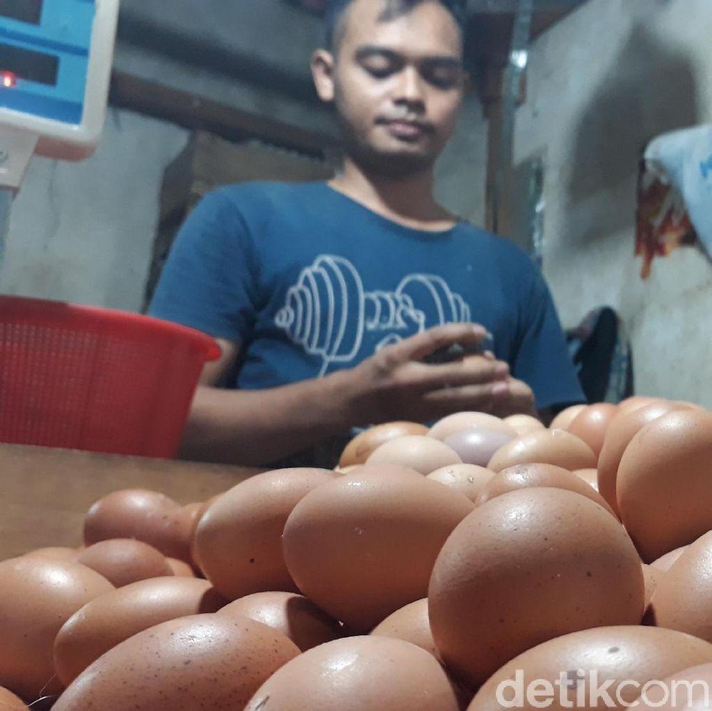 Harga Telur Ayam di Jabar Mahal, Ini Hasil Pengusutan Polisi