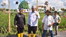 Menteri Desa Kesengsem Cara Banyuwangi Pasarkan Hasil Pertanian