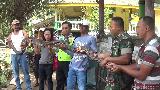 Cerita Pawang Tangkap 8 Sanca di Mojokerto Pakai Tangan Kosong