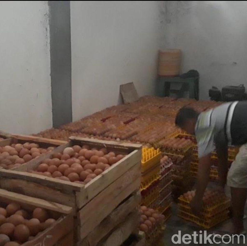 Harga Telur Meroket Tak Dinikmati Peternak di Magetan