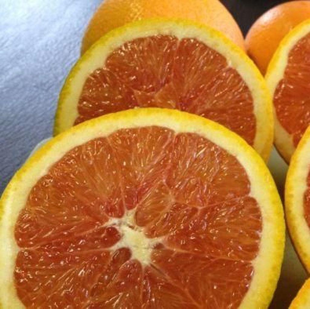 Penelitian di Australia: Jeruk Bagus Untuk Kesehatan Mata