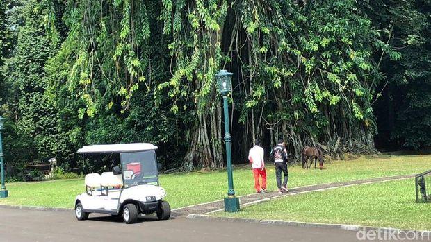 Jokowi ajak Lalu Muhammad Zohri keliling Istana Bogor