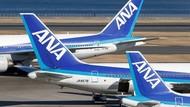 Jepang Memang Canggih, Tahi Kelinci Akan Jadi Bahan Bakar Pesawat