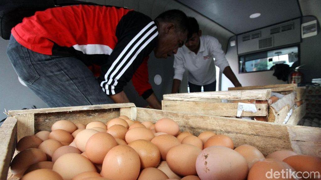 Jaga Kestabilan Harga Telur, Mentan Sebar 100 Ton Telur Murah
