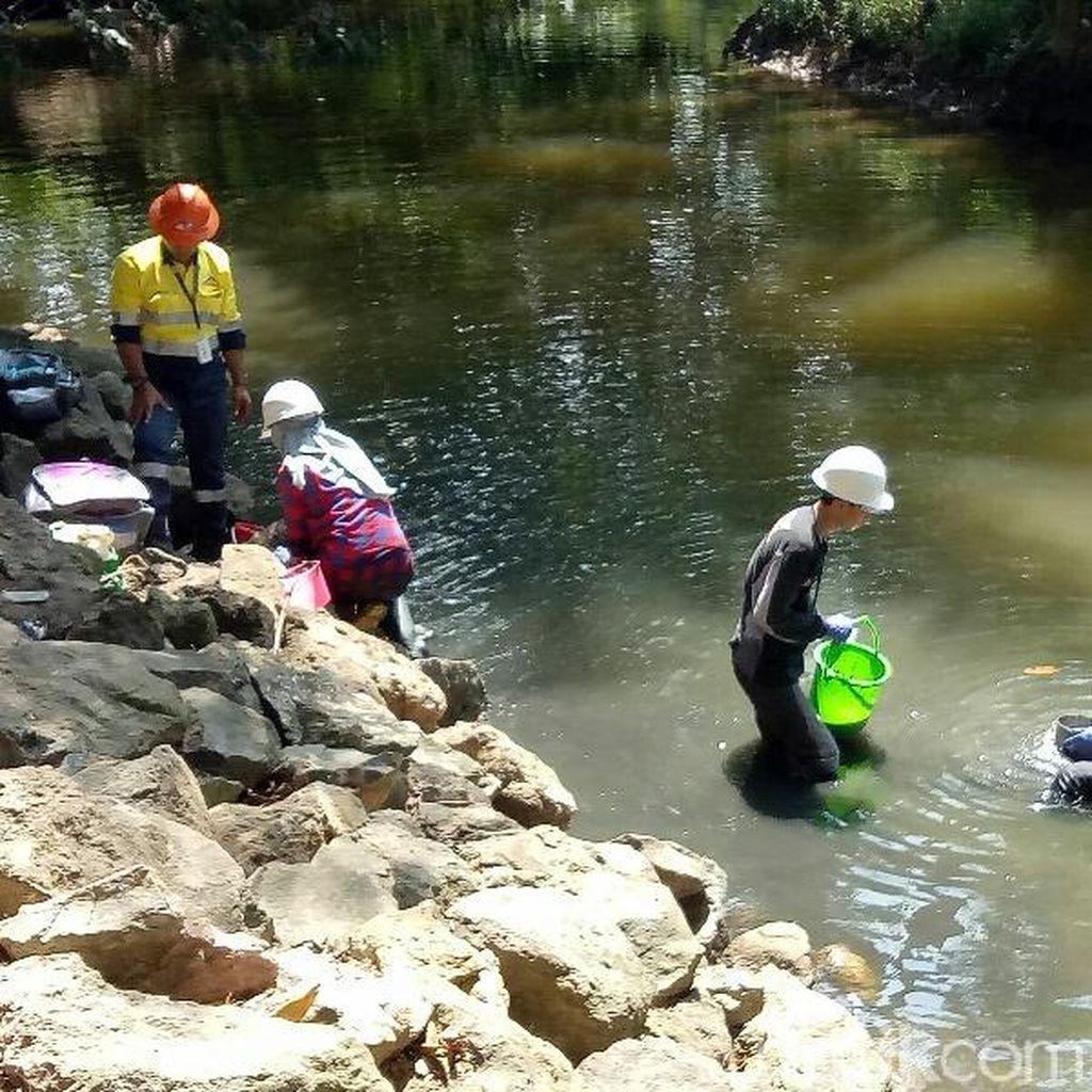 Dinas LH Monitoring Pencemaran di Tambang Emas Banyuwangi