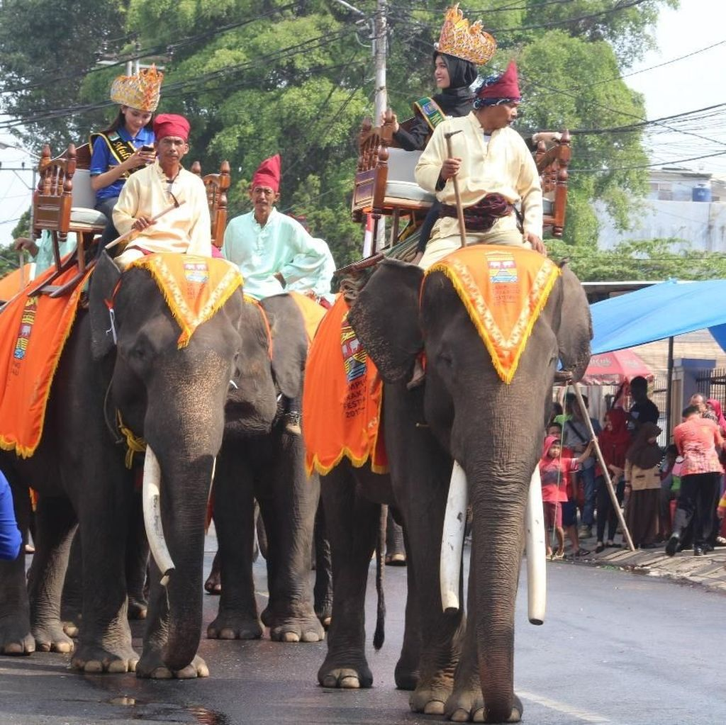Lampung Krakatau Festival 2018 Kembali Digelar, Ini Rangkaian Acaranya