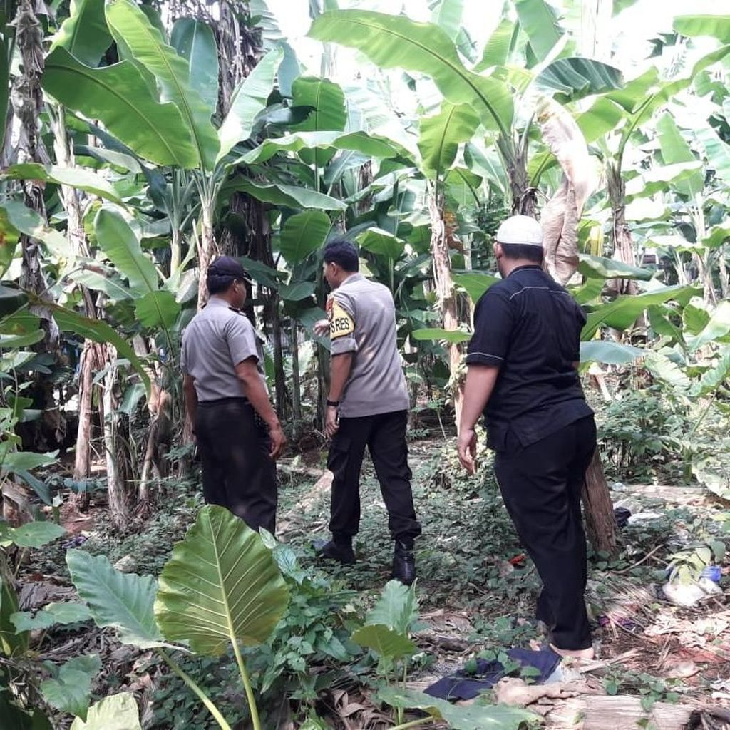 Molotov di Rumah Mardani Ali Sera Diduga Dilempar dari Kebun