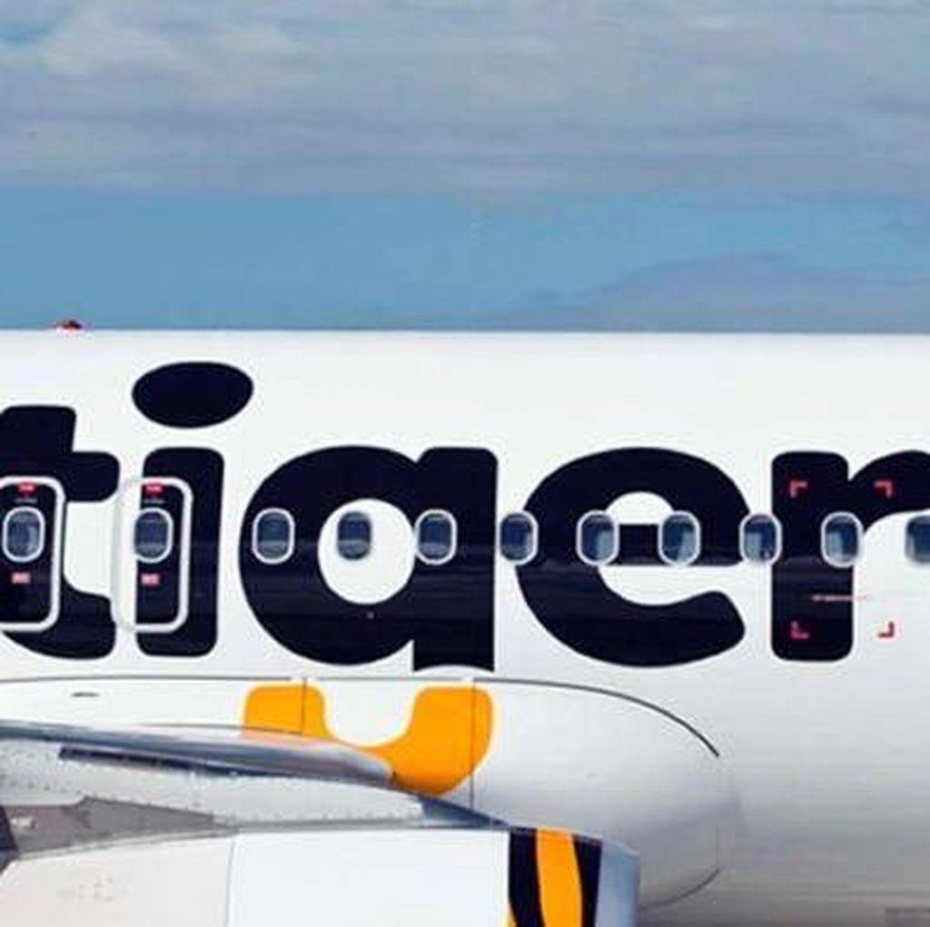 Pesawat TigerAir Australia Terkena Sambaran Petir