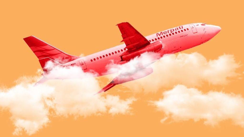 Merpati Mau Terbang Lagi di 2019