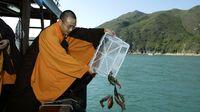 Duh, 10.000 Ekor Ikan di Danau untuk Ritual Keagamaan Malah Dimakan!