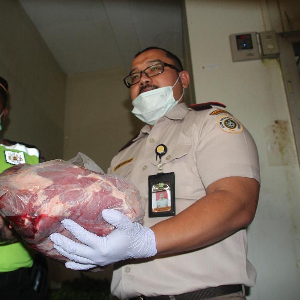 Karantina: Daging Celeng Berpotensi Tularkan Penyakit ke Manusia