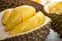 Ini Asal Usul dan Ciri Durian Musang King yang Tersohor Lezat Rasanya