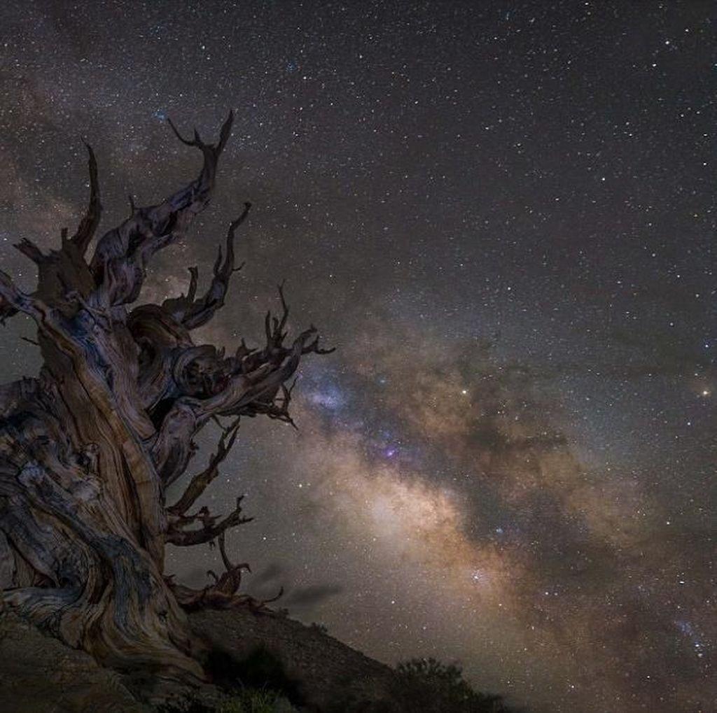 Jepretan Fantastis Finalis Kontes Foto Astronomi