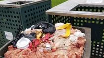 Didenda Puluhan Juta karena Buang Limbah Daging Bebek