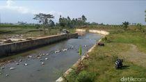 Kala Bau Busuk Limbah Ayam di Sungai Bikin Geram Warga Garut