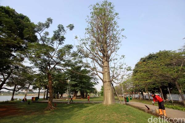 Taman Ria Rio berada di Kayu Putih, Jakarta Timur. Di sini kamu bisa melakukan beragam aktivitas seperti jogging, bersantai, dan berkumpul di area amphiteater. (Agung Pambudhy)