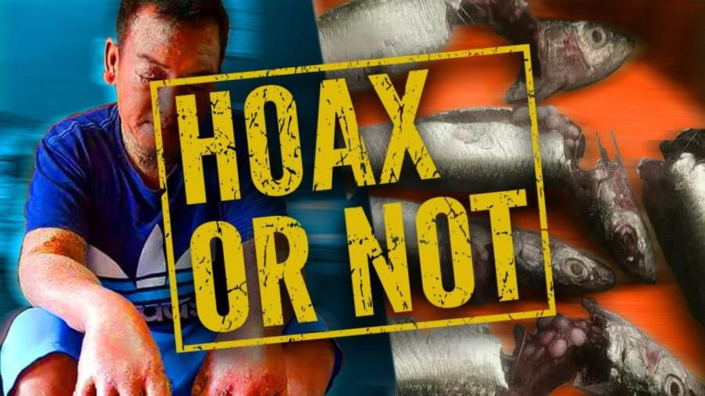 Beredar Pesan Berantai Telur Ikan Bikin Kanker Kulit, Hoax Bukan?