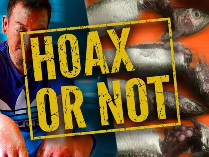 Beredar Pesan Berantai 'Telur' Ikan Bikin Kanker Kulit, Hoax Bukan?