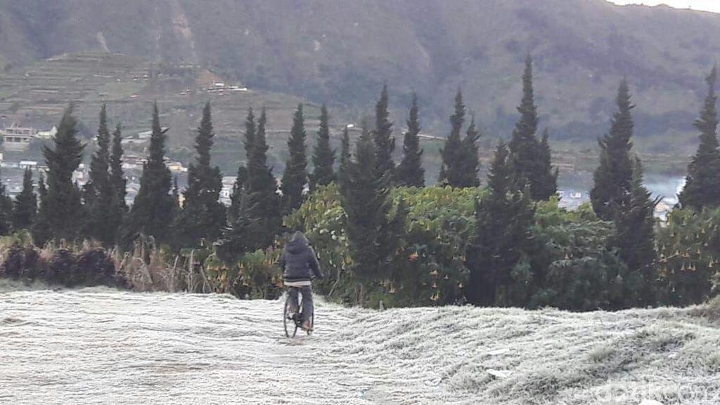 Foto: Embun Es Selimuti Dieng saat Minus 3 Derajat Celcius
