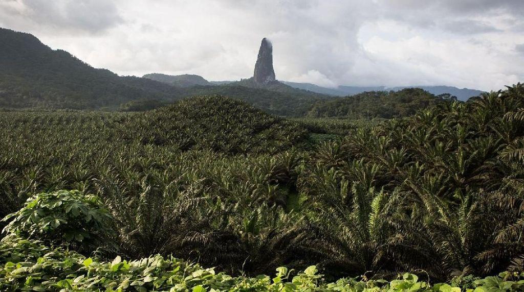 Ini Gunung Paling Langsing di Dunia
