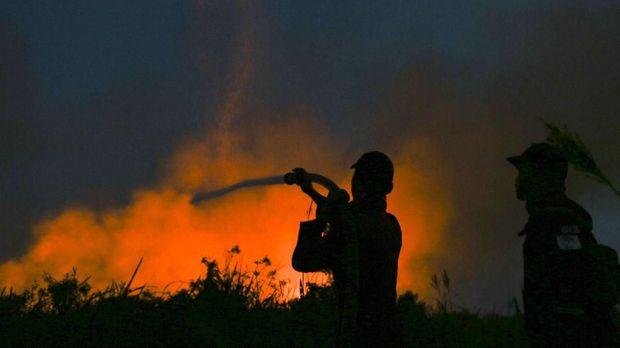 Tradisi 'Gawai Serentak' Malah Picu Kebakaran Hutan di Kalbar