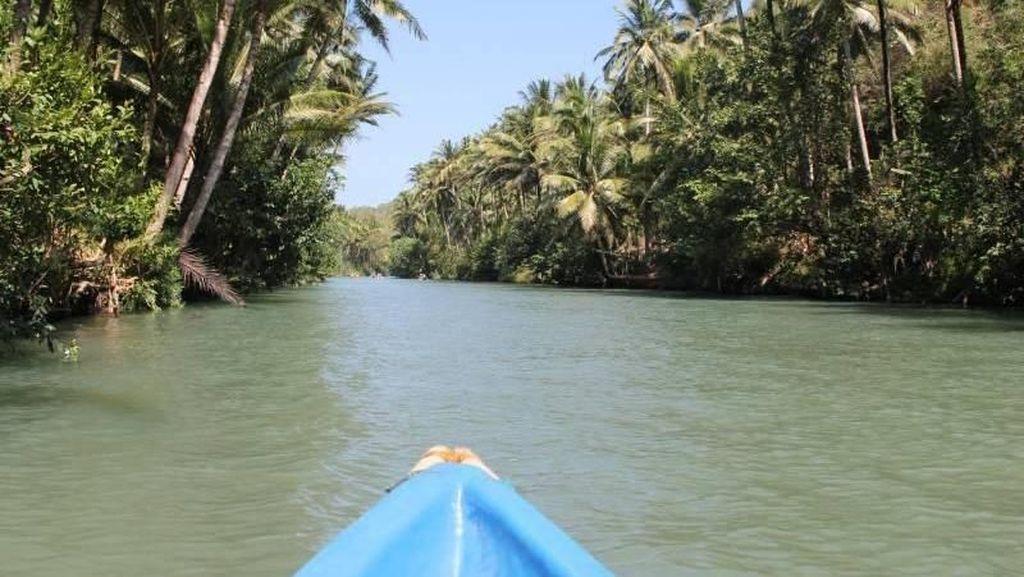 Menjelajahi Sungai Amazon Indonesia