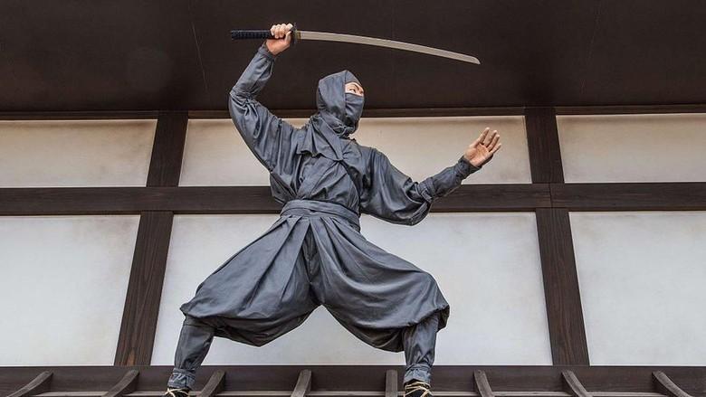Ilustrasi ninja (BBC Magazine)