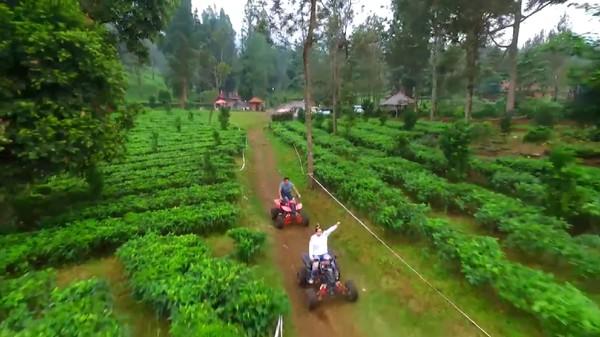 Buat traveler yang ingin mencari suasana hijau dan udara sejuk, bisa mampir ke Agro Wisata Gunung Mas di Puncak. Kamu pun bisa wisata agro di sana (20Detik)