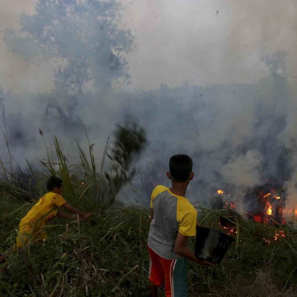 Danrem Wirabima: Pelaku Pembakar Lahan di Riau Tembak di Tempat!