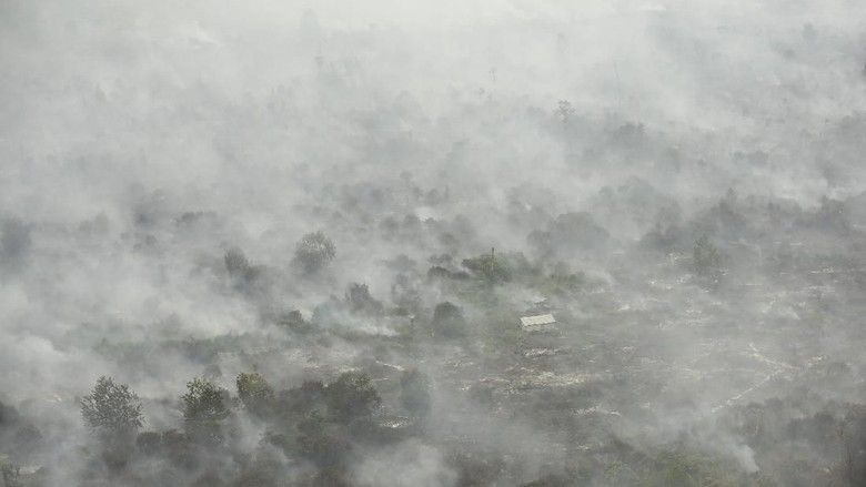 Ancaman Asap dan Kebakaran Hutan saat Asian Games