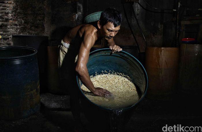 Perajin membuat tempe dengan mengolah kacang kedelai di pabrik rumahan, kawasan Sunter Jaya, Jakarta Utara, Selasa (31/7).