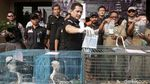 Polisi Bongkar Sindikat Perdagangan Satwa Liar via Medsos