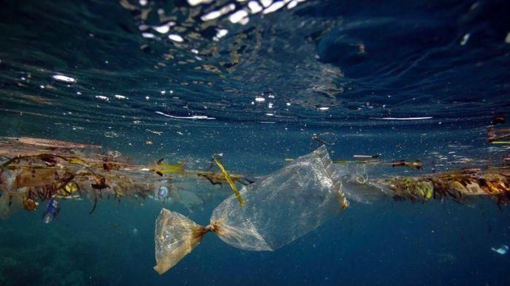 Cara Susi Bersihkan Laut dari Sampah Plastik
