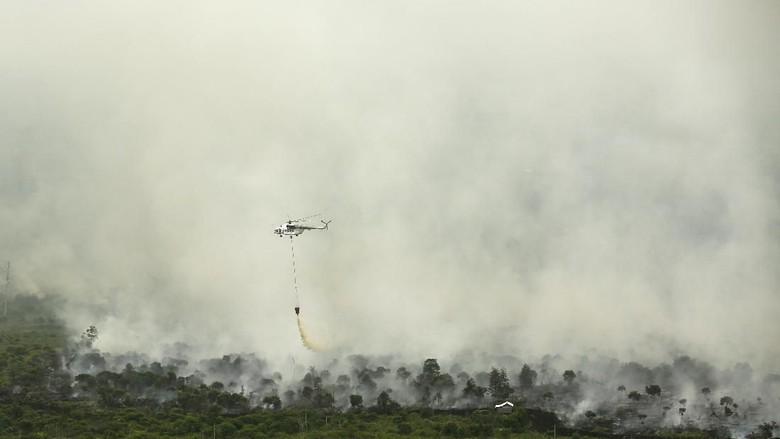 Hasil gambar untuk FOTO kabut asap
