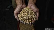 Trump Gugat Rp 5 T, RI Siap Buka Keran Impor Produk Pertanian AS